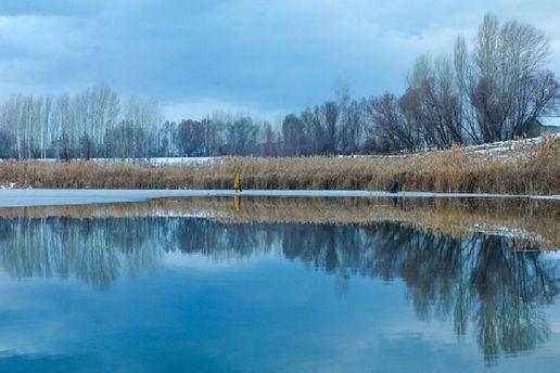 Погода на 8 грудня: тепло та без дощів