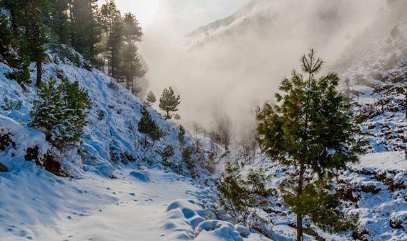 Відлига може спричинити сходження сніговин лавин уКарпатах