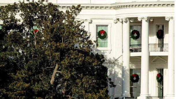 Перша леді США вирішила спиляти 200-річне дерево під Білим домом
