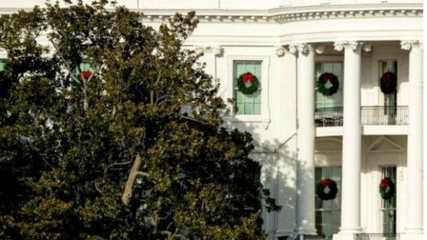 Супруга  Трампа распорядилась срубить 200-летнее дерево налужайке уБелого дома