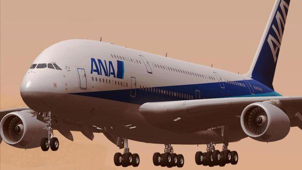 Самолет изЛос-Анджелеса недолетел доТокио из-за невнимательного пассажира