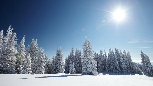 Прогноз погоди в Україні на п'ятницю, 12 січня