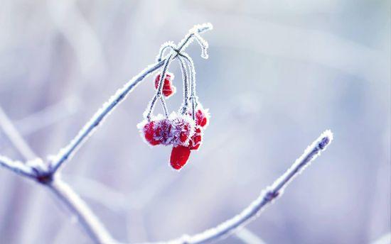 Погода в Україні на неділю, 14 січня