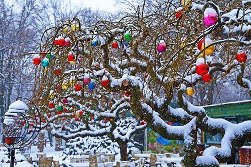 Одессу заметает снегом: сказочные фото города