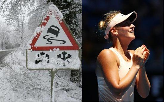 Головні новини 17 січня: знову негода, резонансна ДТП у Харкові і тенісні перемоги