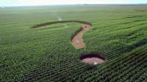 Что мешает развитию аграрного сектора, или Прокормит ли Европу украинская земля?