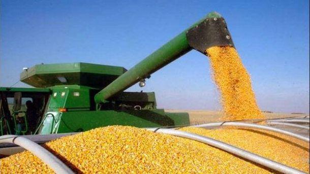 Китайские трейдеры решили покупать кукурузу вУкраинском государстве вместо США