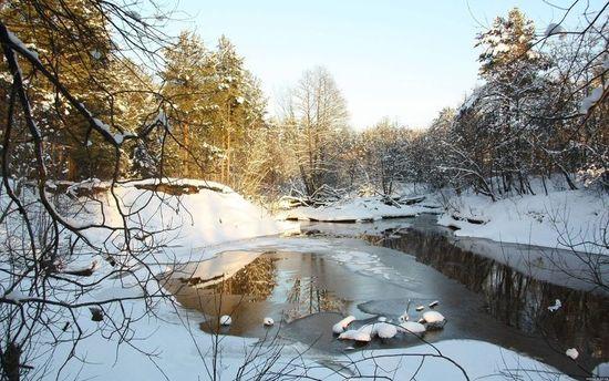 Прогноз погоды на 16 февраля: зима отступает