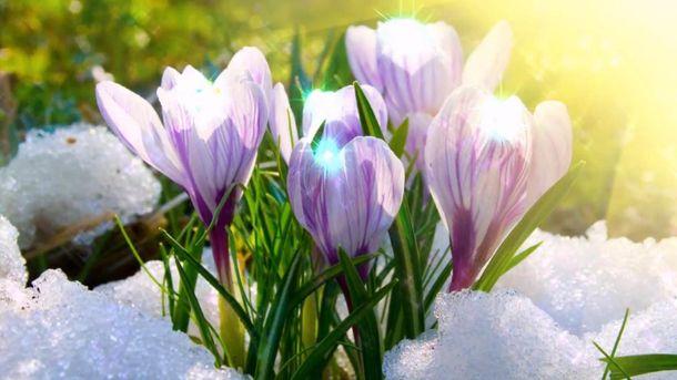 ВУкргидрометцентре спрогнозировали, когда вгосударстве Украина наступит весенняя погода