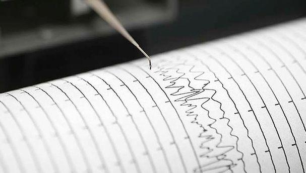 Около Южных Курил случилось землетрясение магнитудой 4,6