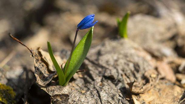 Прогноз погоди на квітень: коли чекати тепла