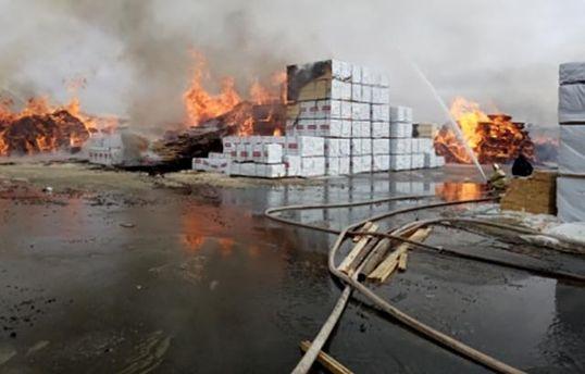 «Огромный столб огня»— вЛенинградской области полыхает лесопильный завод