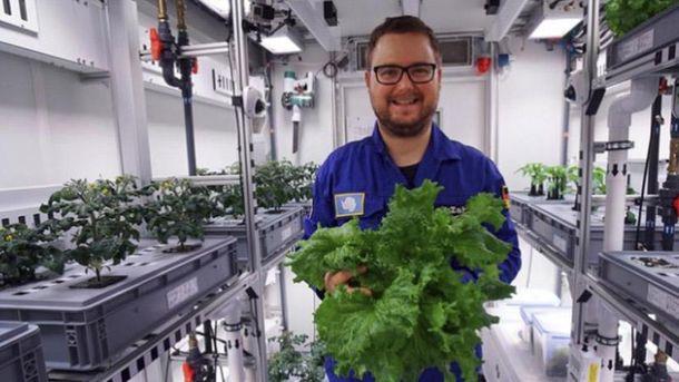 Науковці виростили овочі без землі