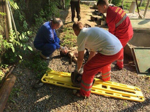 Рятувальники дістали тіло загиблого на АЗС у Білій Церкві
