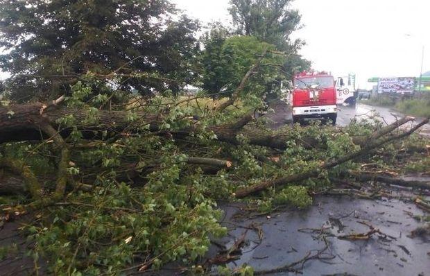 Сильні зливи у Мукачеві розмили асфальт