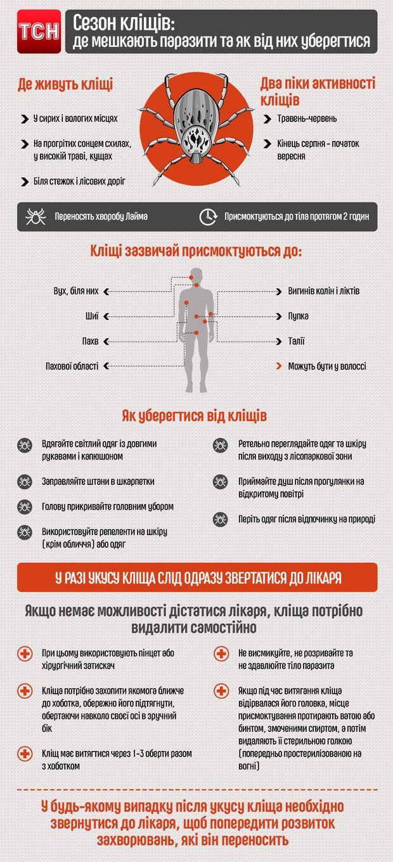 Як уберегтися від укусів кліщів