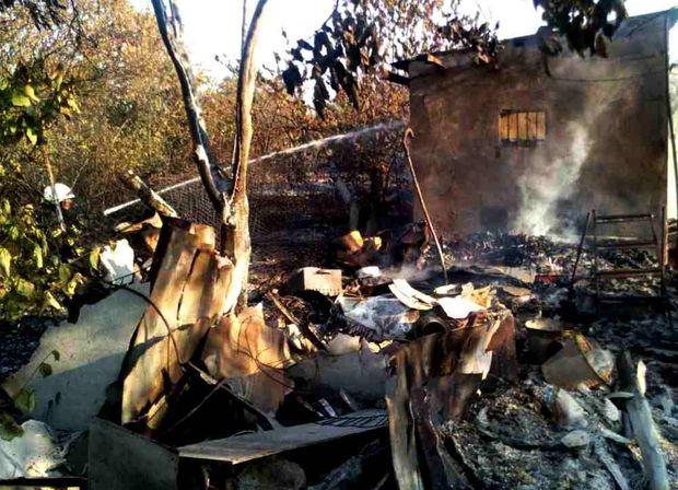 Масштабна пожежа сталась в дачному кооперативі на Одещині