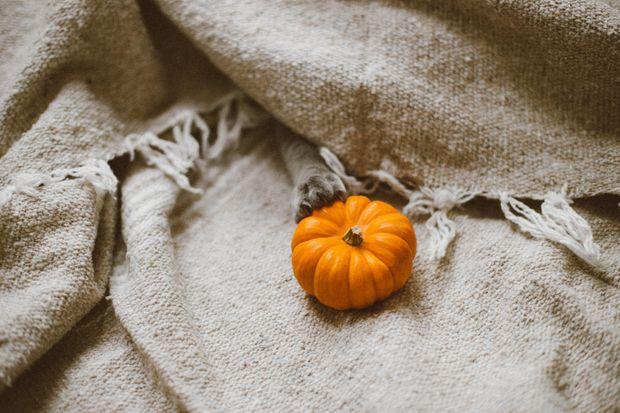 Боротьба з авітамінозом: додайте до свого раціону сезонні овочі та фрукти
