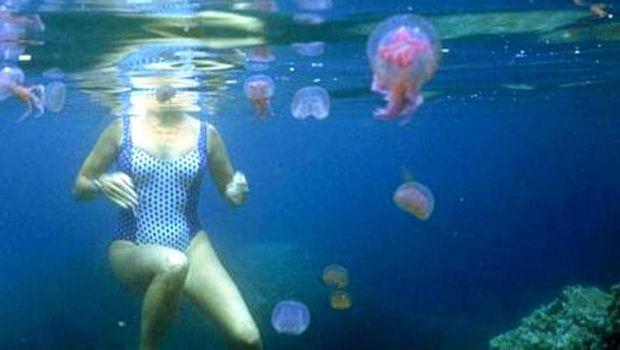 Що робити, коли ужалила медуза