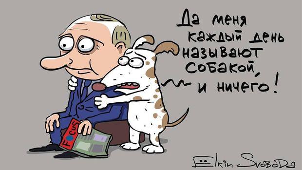 """""""Путин - не собака?"""": в Берлине пикетировали посольство РФ с протестом против кремлевской пропаганды и вмешательства в выборы в Германии - Цензор.НЕТ 3881"""