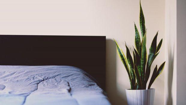 Обирайте постільну білизну та піжаму із натуральних матеріалів