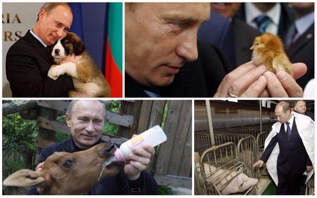 Путін і світ тварин