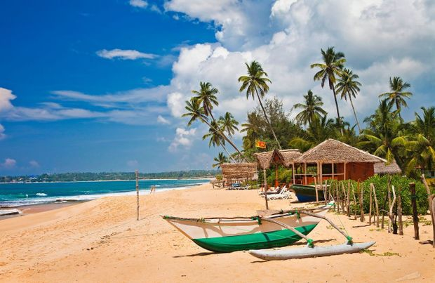 Шрі-Ланка: як самостійно організувати незабутню мандрівку в райський куточок