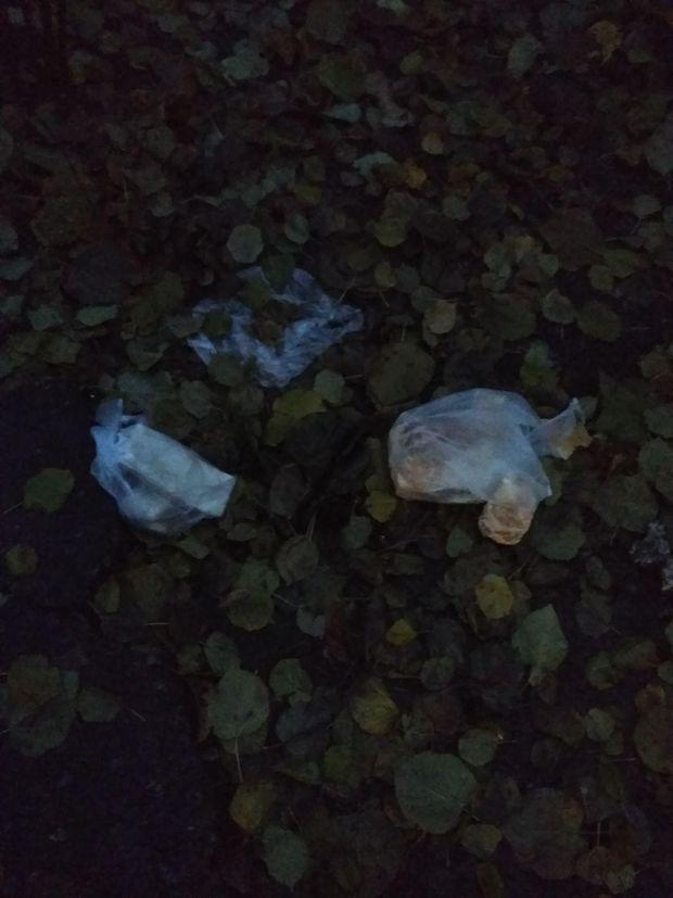 У Києві на голову викидають сміття