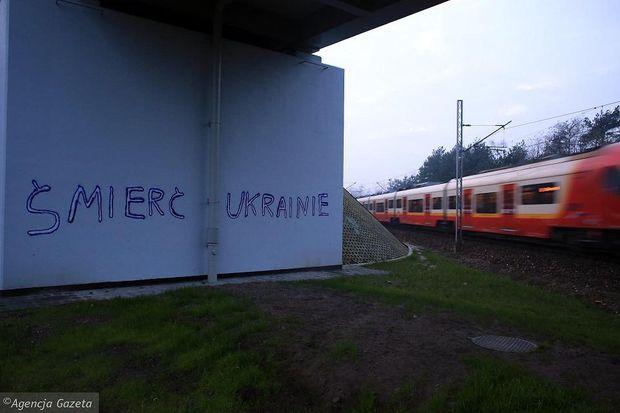 Польща, Варшава, Україна
