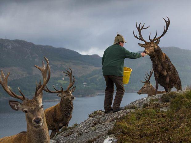 Лучшие фотографии 2017 года от National Geographic 7