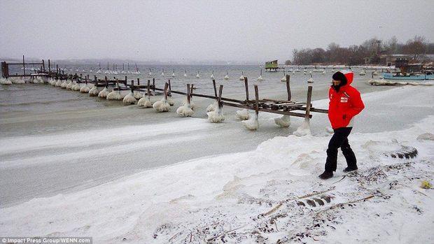 У Болгарії замерзло Чорне море