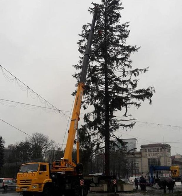 Ялинка Молдова Кишинів