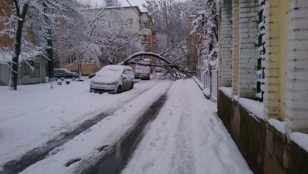 Негода, Львів, погода, лихо