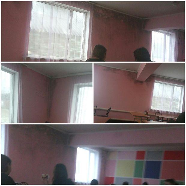 Школа, діти, цвіль, Миколаївщина. Новий Буг