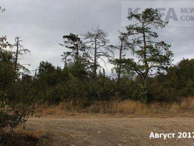 Екологічне лихо у Криму
