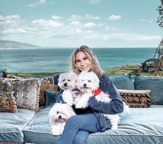 Барбара Стрейзанд з клонованими собачками