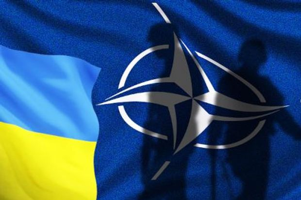 Картинки по запросу Ukrayna NATO