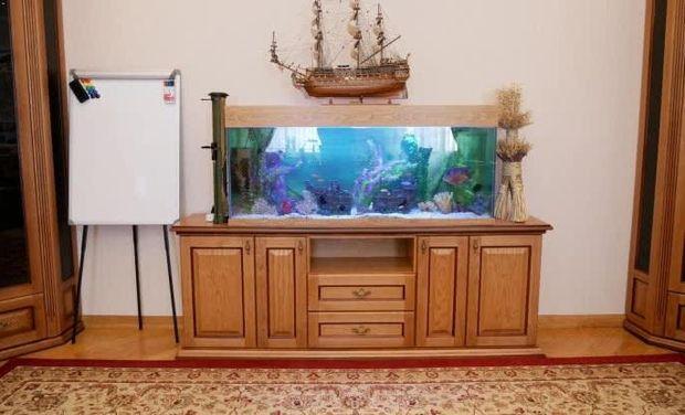 Холодницький акваріум
