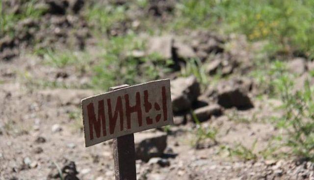 В ДНР сообщили о гибели троих детей под Горловкой при взрыве мины
