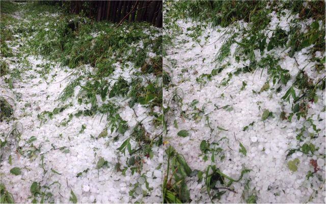 Как снегом: Прикарпатье обильно засыпало градом
