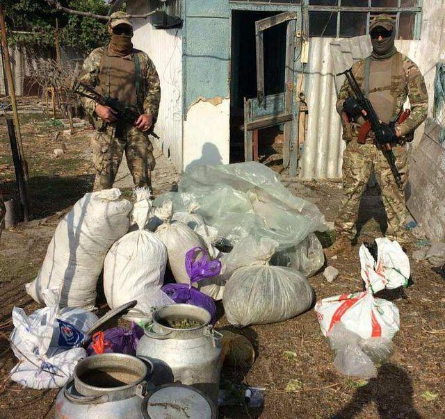 Партию наркотиков на 11 миллионов гривен изъяла полиция в Херсонской области